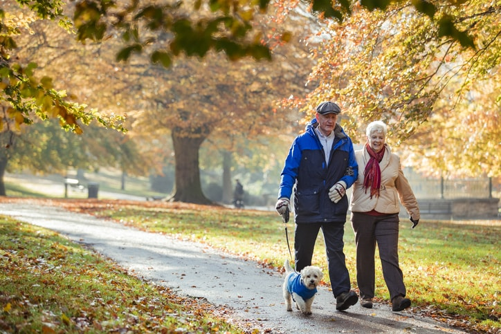 elderly couple walking dog in park